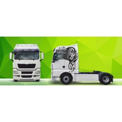 Sunkvežimio reklaminis lipdukas V7 MAN Green Art