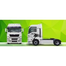Sunkvežimio reklaminis lipdukas V21 MAN Green Art