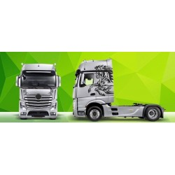 Truck Decals/Sticker V4 Mercedes Actros Green Art